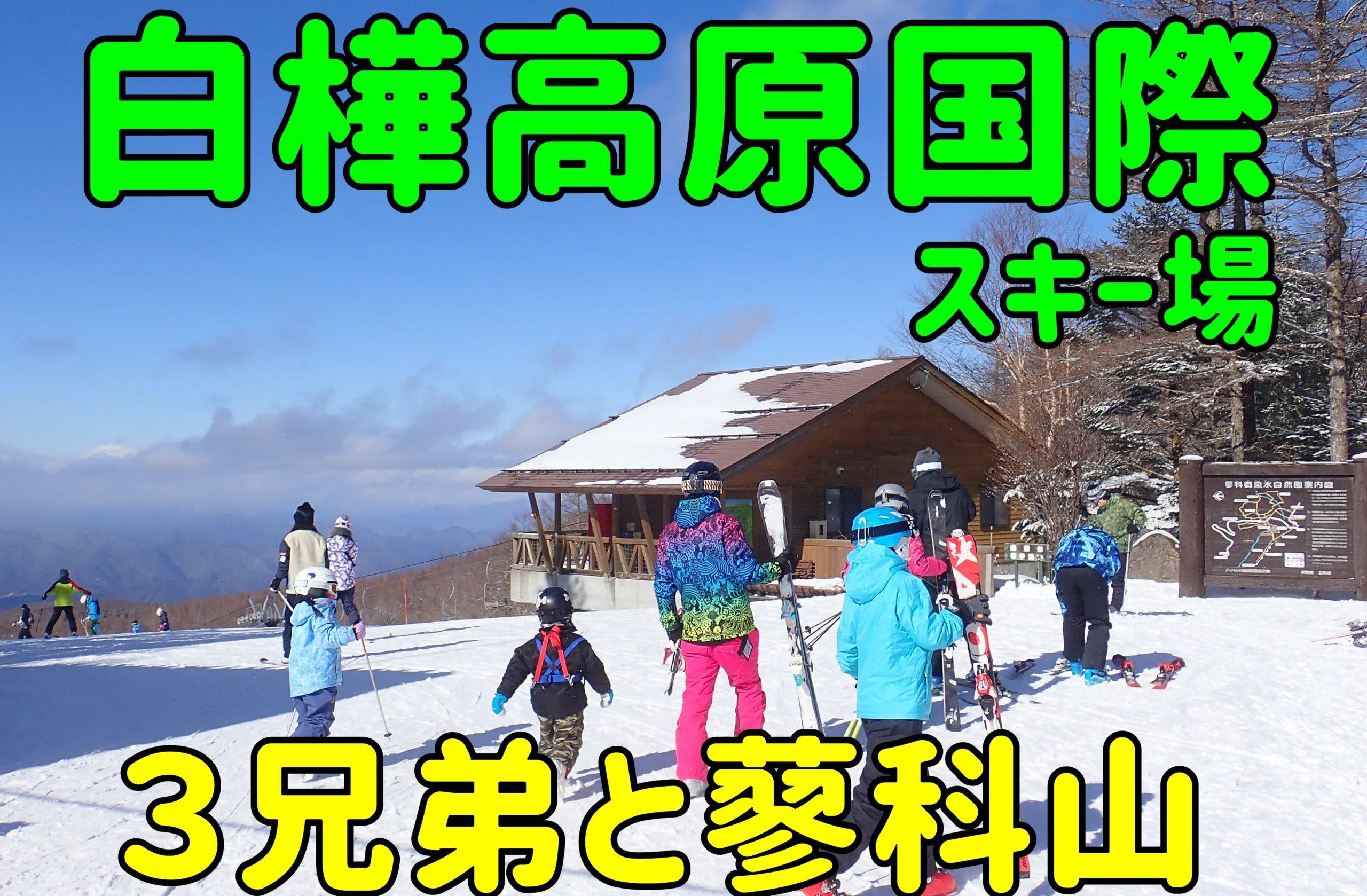 国際 白樺 スキー 天気 高原 場
